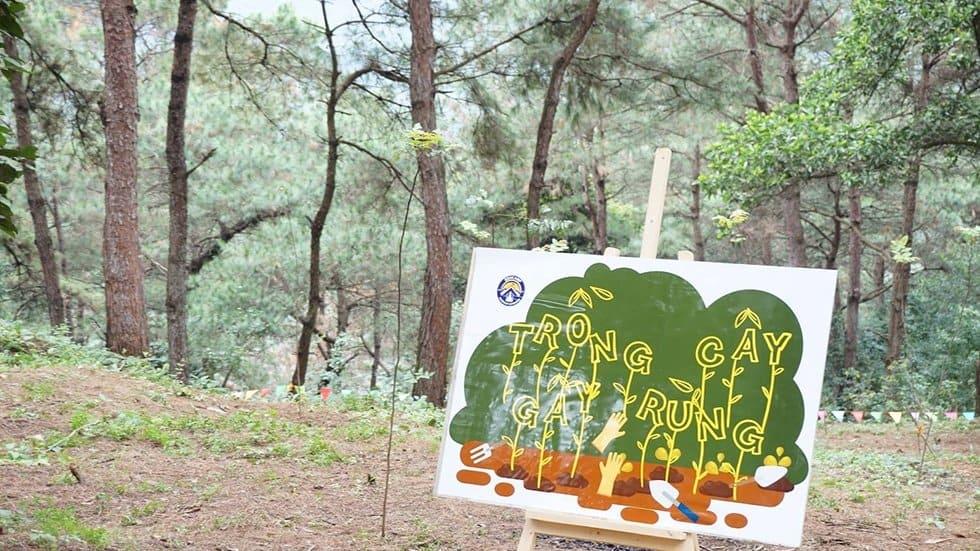 Trường học rừng xanh